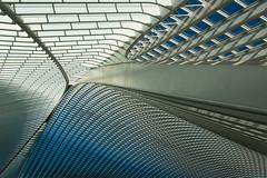 Calatrava symphony (jefvandenhoute) Tags: belgium belgië belgique light lines liège shapes lightplay calatrava guillemins railwaystation