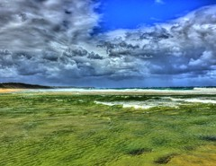 After the rain, it's  not so blue III (elphweb) Tags: hdr highdynamicrange nsw australia coast coastal freshwater afterrain green oliveygreen lakemouth colourchange colorchange sky skies