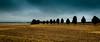 Along the Way of Painters (Beppe Rijs) Tags: deutschland eos600 elbsandstein sachsen germany saxony sandstone blue blau braun brown summer weg way tree baum cloud wolkendecke wolke malerweg wayofpainters sächsischeschweiz saxonswitzerland