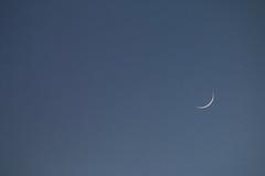 Al 5% y creciendo (arapaci67) Tags: luna creciente minimalista minimal minimalphotogtaphy canon70d blue moon