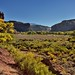 Towering Mesas While Enjoying a Drive Along the Indian Creek Corridor Scenic Byway (Bears Ears National Monument)