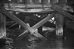 Under Old San Francisco Bay Pier (monochrome rendition) (sswj) Tags: water bay oldpier oldwoodpier sanfranciscobay presidionyachtclub fortbaker sausalito marincounty northerncalifornia california composition availablelight existinglight bw monochrome blackandwhite dslr fullframe nikon d600 nikkor28300mm scottjohnson abstractreality weathered