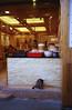 Cat in front of DimSum Restaurant, Jiu Fen Old town (ckvn1969) Tags: dimsum jiufen taiwan jilong old town tourist destination famous food street