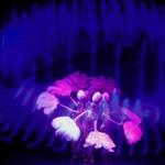 JACKPOT ~ Las Vegas Style Show thumbnail