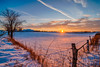 Snowy Sunset #1 (tquist24) Tags: hdr indiana lagrangecounty nikon nikond5300 outdoor barbedwire barbedwirefence clouds cold evening farm fence geotagged landscape rural rustic sky snow sunburst sunset tree winter shipshewana unitedstates