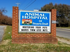 """Neutering your pets makes them less nuts"" (SchuminWeb) Tags: schuminweb ben schumin november 2017 stuarts draft stuartsdraft virginia va augusta county dr june cohron doctor animal hospital animalhospitalofstuartsdraft drjune veterinary veterinarian dvm vet vets neuteringyourpetsmakesthemlessnuts neutering your pets makes them less nuts testicles neuter testicle testes neutered fixing fixed pet animals state 608 route draftavenue avenue sign signs signage message messages signing brick 209 medicine medical humorous humor funny"