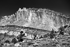 A Look Across a Nearby Hillside to Towering Cliff Walls of the Waterpocket Fold (Capitol Reef National Park) (thor_mark ) Tags: anseladamslookfromcapturenx2 azimuth359 blackwhite blueskies capitolreefnationalpark capitolreefnationalparkscenicdrive capturenx2edited centralutahplateaus colorefexpro coloradoplateau day2 desertlandscape desertmountainlandscape desertplantlife desertwildflowers fishlakeplateau highdesert intermountainwest landscape layersofrock lookingnorth monocline nature nikond800e outside portfolio project365 roadsidepulloff scenicdrive sunny trees utahhighdesert utahnationalparks2017 waterpocketfold waynewonderland ut unitedstates
