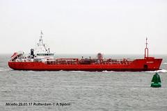Alcedo (andreasspoerri) Tags: 9190315 alcedo brekopapendrecht niederlanden rotterdam tanker