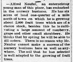 1890 - Alfred Nufer nursery starts - Enquirer - 17 Jan 1890