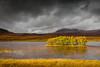 Ile sur le Loch Awe, N d'Ullapool, Assynt. (heiserge) Tags: lacs europe paysages ecosse scotland highland landscape lake clouds light lumière soleil sun ruhes roseaux