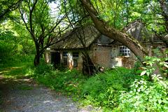 Radioactive Cottage, Pripyat Ukraine (Harald Philipp) Tags: chernobyl ukraine pripyat radioactive sony abandonedhouse decay ussr soviet communism