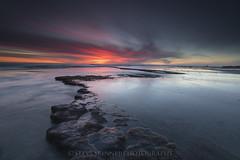 Skimming The Surface (sjs61) Tags: sjs61 steveskinnerphotography steveskinner surf seascape sunsets slowexposure swamisreef encinitas beach longexposure leendgradfilters