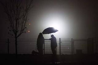 Sorauren dog park in fog