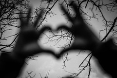 Love is in the air (Peter Branger) Tags: activeassignmentweekly loveisintheair hands heart blackwhite trees branch canoneos5d petzval newpetzval bestofweek1 bestofweek2 bestofweek3 bestofweek4
