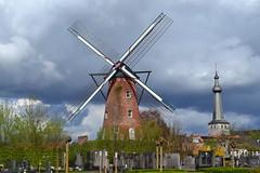 Windmolen, Oelegem (Erf-goed.be) Tags: windmolen molen oelegem ranst archeonet geotagged geo:lon=45957 geo:lat=512103 antwerpen molenvanoelegem