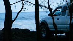 Waipio (81) (BoyUtot) Tags: waipiovalley waipiofalls waimea surfing hiking trekking dronephotography mavic panasonicgh1 hawaii bigisland lumix 100300mm travel nature landscape seascape honokaa ramesesmendoza