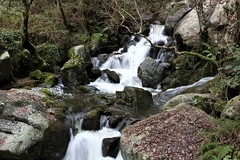(albavv46) Tags: trip green nature naturephotography naturaleza water river agua colores otoño galicia landscape landscapephotography places canon forest tree rocas stones contrast autumn colors day