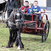 Young drivers (Frank Fullard) Tags: frankfullard fullard candid street portrait young driver horse fair ballinasloe happy funn age youth child green galway irish ireland