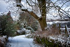 Bethany Lane (Missy Jussy) Tags: morning snow trees drystonewalls path fence rural countryside house bethanylane newhey rochdale landscape lancashire lane cold fields canon canon5dmarkll 70200mm ef70200mmf4lusm ef70200mm dogwalk beastfromtheeast