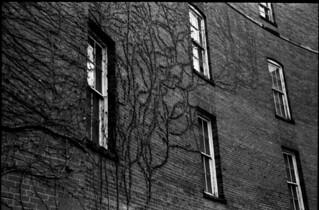 Walls of Buffalo State Asylum - Buffalo, NY