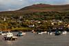 Carn Ingli….. (AJFpicturestore) Tags: pembrokeshire wales newport theparrog carningli mountainofangels hightide boats alanfoster