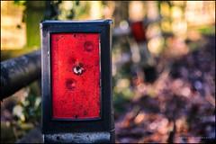 Red means caution (G. Postlethwaite esq.) Tags: dof derbyshire radbournelane beyondbokeh bokeh depthoffield fence leaves marker photoborder red selectivefocus winter roadside