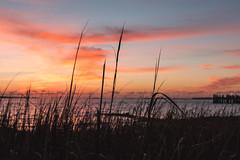 Charleston, SC (adamwilliams4405) Tags: canon sunrise sunrises south sc charleston tones colors coast ocean moody mood nature landscapes explore clouds carolinas tourist