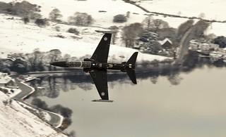 lake hawk