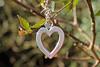 """Wearing my heart on ......."" (christina.marsh25) Tags: heart valentinesday jewellery silver chain myheartwillgoon flickrfriay"