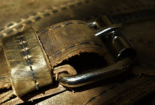 The Buckle - Fastener