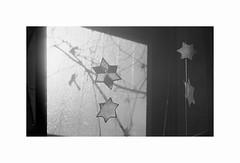 #25-18 (7things_and_photo) Tags: monochrome sunset film glass window leica elmar 65mm visoflex