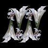 Calla Lilies & Beallara Orchids (Pixel Fusion) Tags: calla lily beallara orchid flower flora nature macro nikon d600