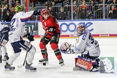 DEL2018-126.jpg (sushysan.de) Tags: bundesliga del deutscheeishockeyliga eishockey iserlohn iserlohnroosters kec köln kölnerhaie lanxessarena pix pixsportfotos roosters saison20172018 pixsportfotosde sushysan sushysande