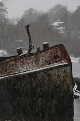 Crow's Nest (Andy Magee) Tags: crow bird wildlife nature boat wreck rust snow winter bowling derelict canon tamron scotland weather