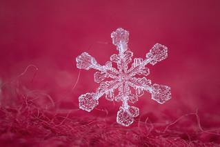 Snowflake n° 14 - Winter 2017-2018 - Switzerland