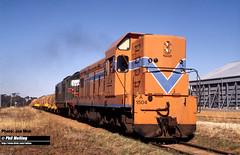 J547 A1504 XA1407  Wickepin 10 December 1981 (RailWA) Tags: railwa philmelling joemoir westrail a1504 xa1407