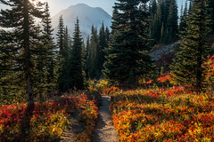 Tipsoo Lake/Naches Peak Loop (Laura Jacobsen) Tags: fallcolor hiking mtrainier mtrainiernationalpark nachespeakloop sunset tipsoolake washington