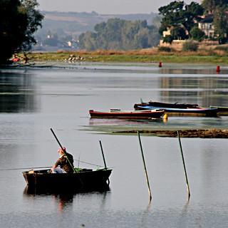 Pêche Tranquille à Bouchemaine