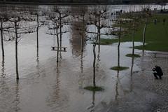Hochwasser am Main-bw_20180107_7322.jpg (Barbara Walzer) Tags: 070118 hochwasser main mainufer