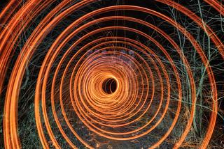 Woodland Wormhole