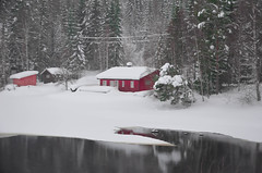 Blessed life (evakongshavn) Tags: red white new light snow winter hivernal hiver winterwonderland winterwald winterlandscape wonderlandscape wonderfulworld enjoy enjoyingthemoment blessed natur nature frozen lake frozenlake water waterscape forest wald foret 7dwf