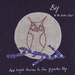 2010_Boy_and_The_Echo_Choir_And_Night_Arrives_In_One_Gigantic_Step (Marc Wathieu) Tags: rock pop vinyl cover record sleeve music belgium belgië coverart belgique pochette cd indie artwork vinylcover sleevedesign