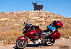 Toro de Osborne (DOCESMAN) Tags: moto bike motor motorcycle motorrad motorcykel moottoripyörä motorkerékpár motocykel mototsikl honda nt700v ntv700 deauville docesman danidoces españa spain toro osborne