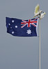 Aussie Flag Debate 001 (DMT@YLOR) Tags: flag aussieflag australianflag australia flagpole pole flap flapping wind unionjack stars sky blue red white sulphurcrestedcockatoo cockatoo goodna queensland ipswich squabble argue debate