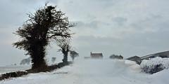Hot Hollow Farm ... looking north (AndyorDij) Tags: hothollowfarm snow snowscape snowing snowdrift snowy frozen frost frosty trees england empingham rutland uk unitedkingdom andrewdejardin 2018
