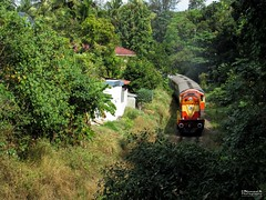 ALCo Treat 3 (mohammedali47) Tags: erswdg3a ernakulam alco indianrailways kerala passenger railfan trains trainspotting railfanning
