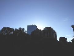 DSCN2995 (alannahalmeda) Tags: boston massachusetts fall leaves city