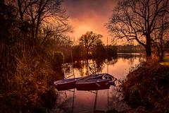 Mote Park, Kent (MarkandJackiephotos) Tags: purple boats trees lake sun park winter landscape sailing sunset bushes