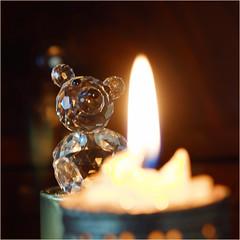 flame........ (atsjebosma) Tags: flame macrosmondays monday macro vlam atsjebosma bokeh thenetherlands nederland groningen