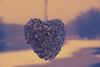 puRple (mariola aga) Tags: heart heartshape purple art coth coth5 thegalaxy